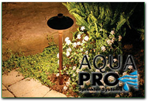Aqua Pro Lighting Service Request
